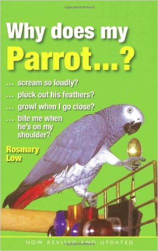 whyparrot