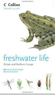 freshwaterlife